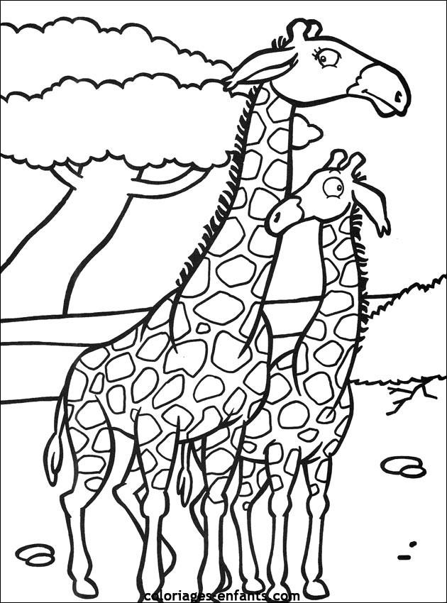 Coloriage et dessins gratuits Girafes amoureux à imprimer
