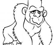 Coloriage Gorille à télécharger