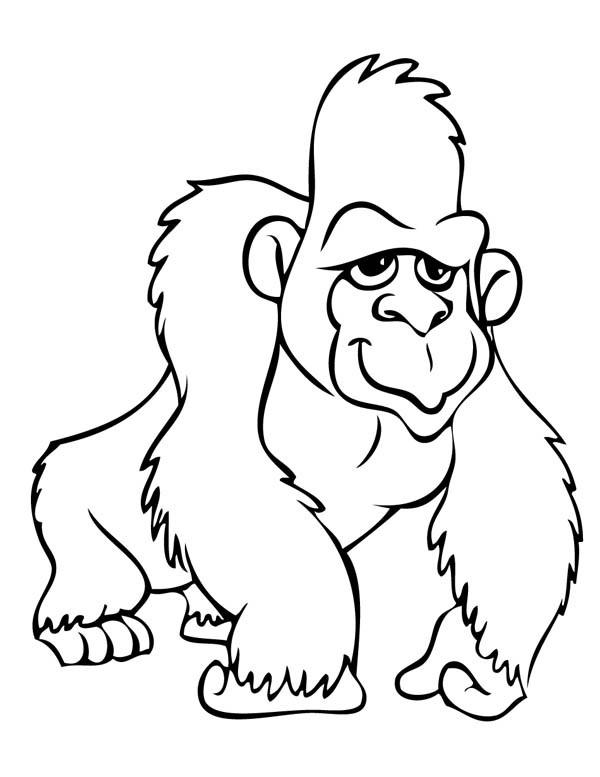 Coloriage et dessins gratuits Gorille à télécharger à imprimer
