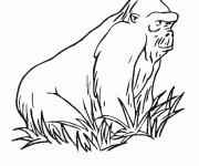 Coloriage et dessins gratuit Gorille couleur à imprimer