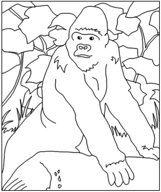 Coloriage et dessins gratuits Gorille dans la forêt à imprimer
