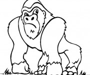 Coloriage et dessins gratuit Gorille dessin animé à imprimer