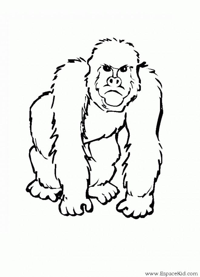 Coloriage et dessins gratuits Gorille en colère à imprimer