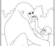 Coloriage Gorille et son bébé