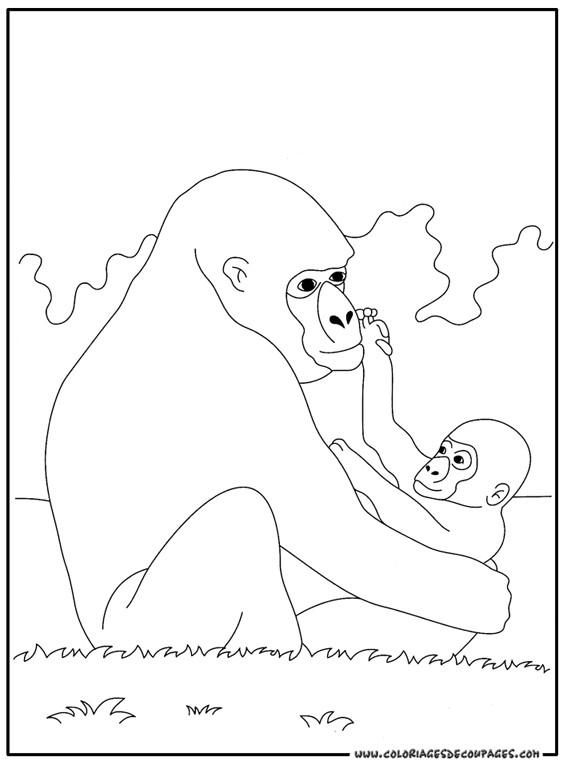 Coloriage et dessins gratuits Gorille et son bébé à imprimer
