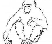 Coloriage et dessins gratuit Gorille pour enfant à imprimer