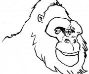Coloriage Tête de Gorille