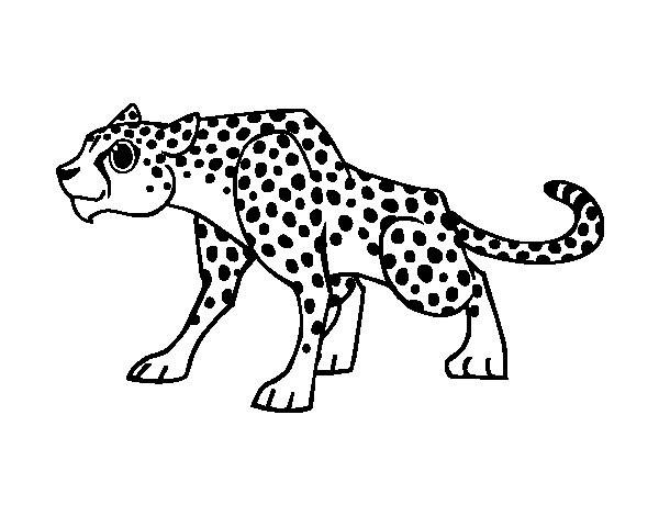 Coloriage et dessins gratuits Guépard attentif à imprimer