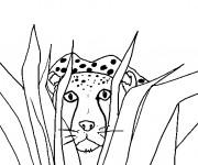 Coloriage et dessins gratuit Guépard caché à imprimer