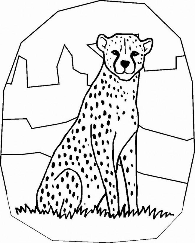 Coloriage et dessins gratuits Guepard facile à imprimer