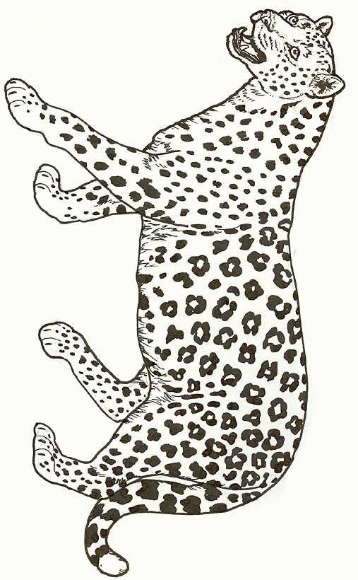 Coloriage et dessins gratuits Guépard ouvrant sa bouche à imprimer