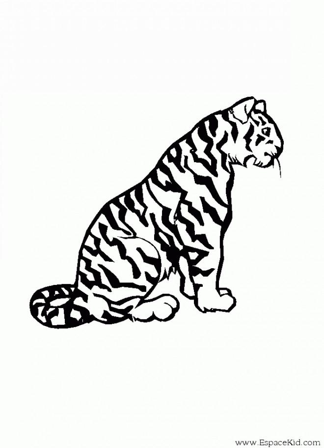 Coloriage et dessins gratuits Guépard pour enfant à imprimer