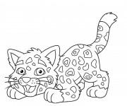 Coloriage Petit Guépard
