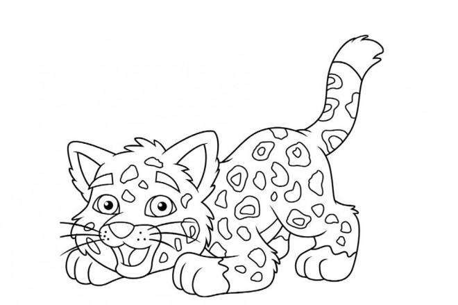 Coloriage et dessins gratuits Petit Guépard à imprimer