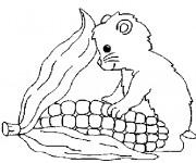 Coloriage dessin  Hamster 10