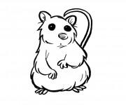 Coloriage dessin  Hamster 2