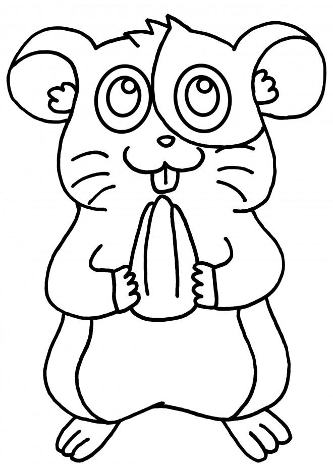 Coloriage et dessins gratuits Hamster couleur à imprimer