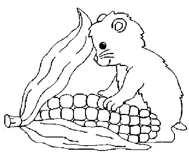 Coloriage et dessins gratuits Hamster en train de manger à imprimer