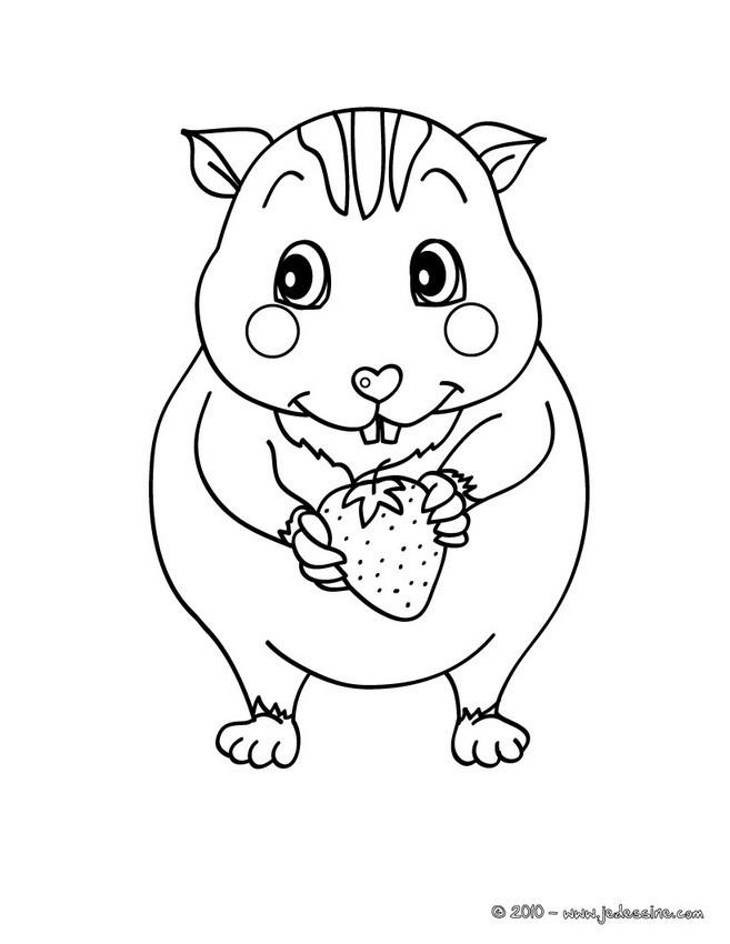 Coloriage et dessins gratuits Hamster et Fraise à imprimer