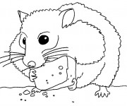 Coloriage Hamster mange de fromage