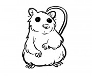 Coloriage Hamster simple
