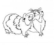 Coloriage et dessins gratuit Hamsters à télécharger à imprimer