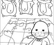 Coloriage Hamsters et la carte du monde