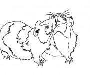Coloriage et dessins gratuit Hamsters russe en ligne à imprimer