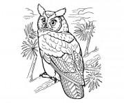 Coloriage et dessins gratuit Hibou dans la nature à imprimer