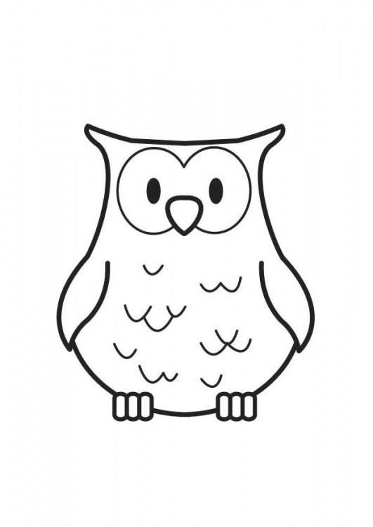 Coloriage et dessins gratuits Hibou facile à imprimer