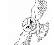 Coloriage Hibou facteur