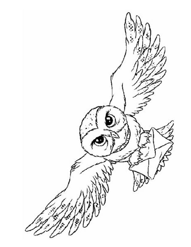 Coloriage et dessins gratuits Hibou facteur à imprimer