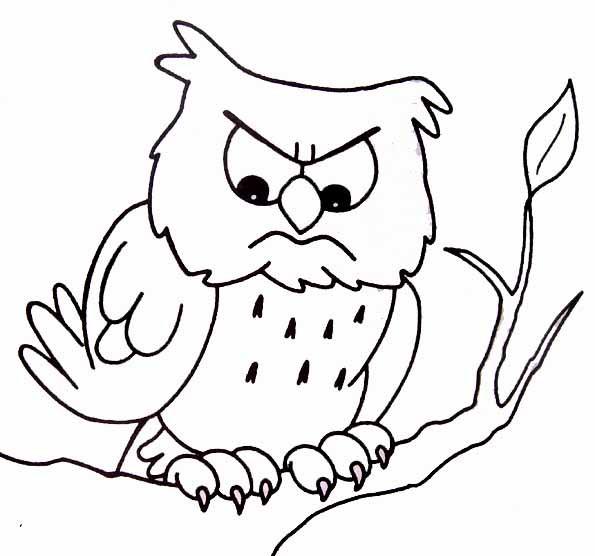 Coloriage et dessins gratuits Hibou nerveux à imprimer