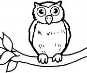 Coloriage et dessins gratuit Hibou pour enfant à imprimer