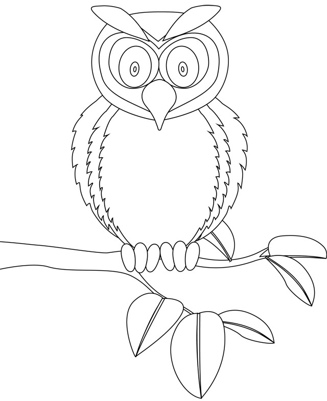 Coloriage et dessins gratuits Hibou surpris à imprimer