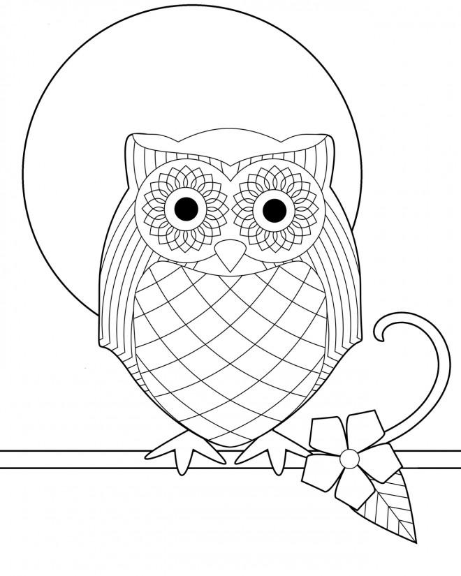 Coloriage et dessins gratuits Hibou vecteur à imprimer