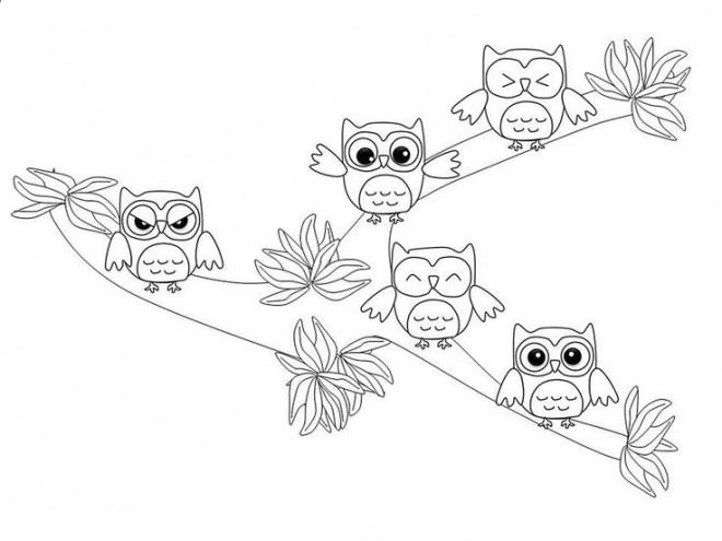 Coloriage et dessins gratuits Petits Hiboux s'amusent à imprimer