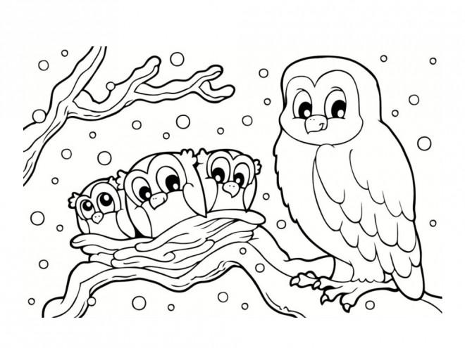 Coloriage une chouette et ses enfants dessin gratuit - Coloriage hivers ...