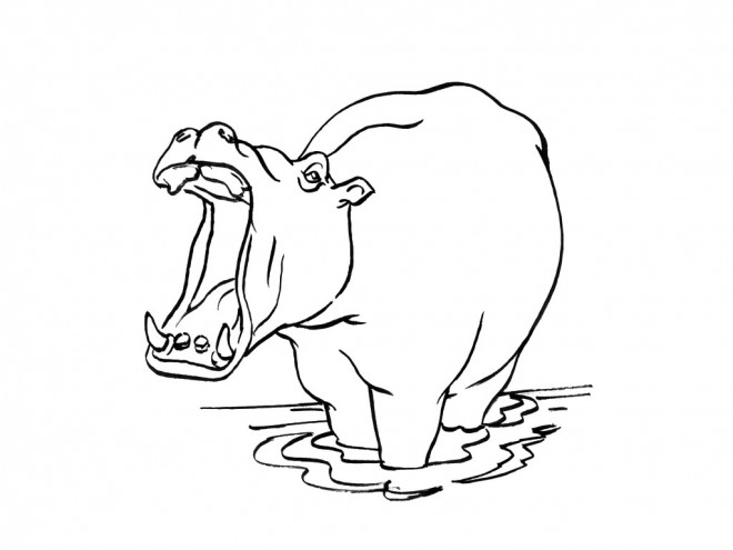 Coloriage et dessins gratuits Hippopotame dans l'eau avec sa bouche ouverte à imprimer