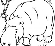 Coloriage Hippopotame dans la forêt