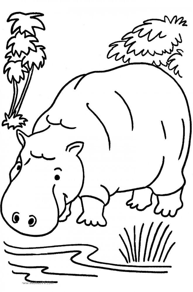 Coloriage et dessins gratuits Hippopotame dans la forêt à imprimer