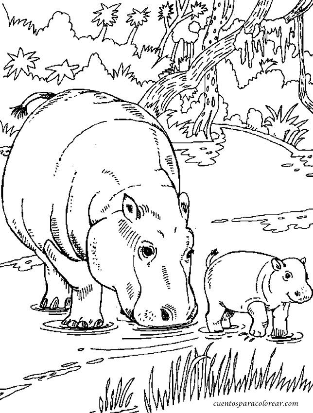 Coloriage et dessins gratuits Hippopotame et son petit dans l'eau à imprimer