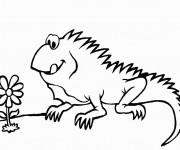 Coloriage et dessins gratuit Iguane et fleur à imprimer