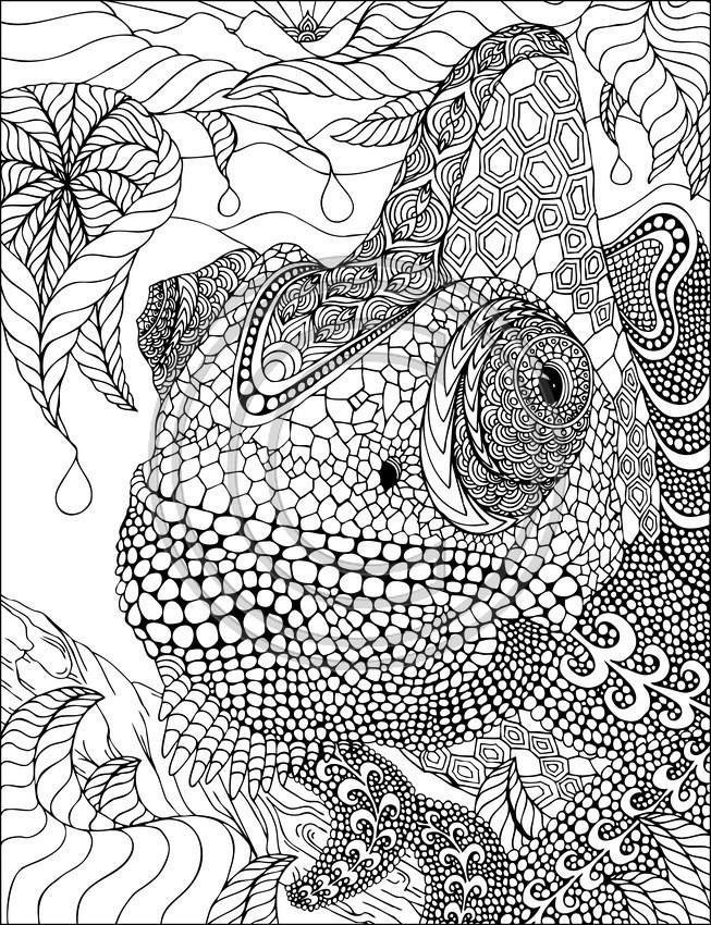 Coloriage iguane mandala dessin gratuit imprimer - Coloriage iguane ...