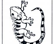 Coloriage et dessins gratuit Iguane noir et blanc à imprimer