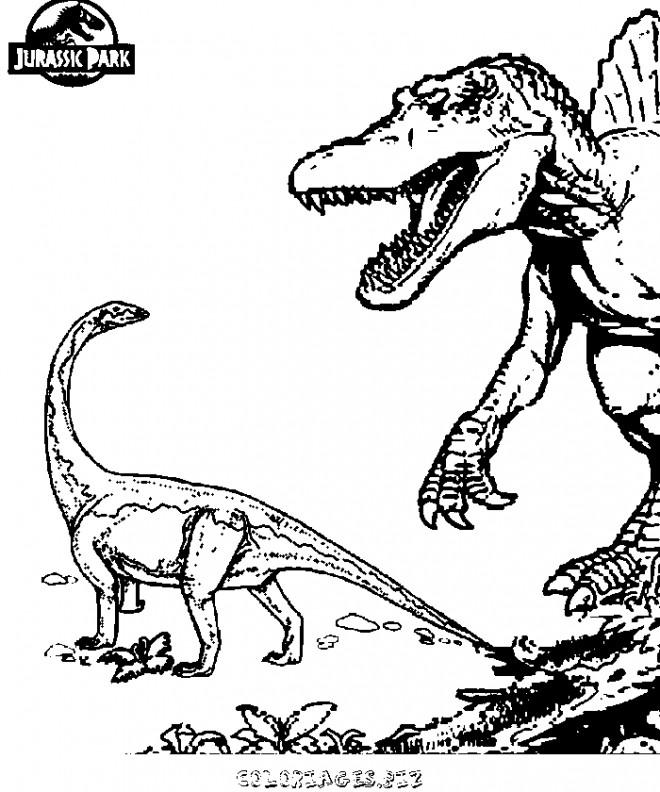 Coloriage et dessins gratuits Deux Dinosaures de Jurassic Park à imprimer