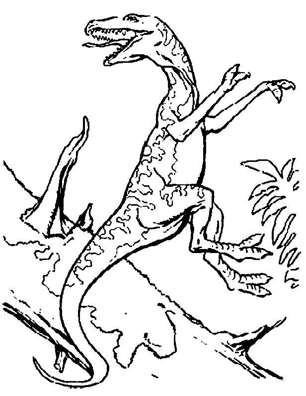 Coloriage et dessins gratuits Dinosaure carnivore à l'attaque à imprimer