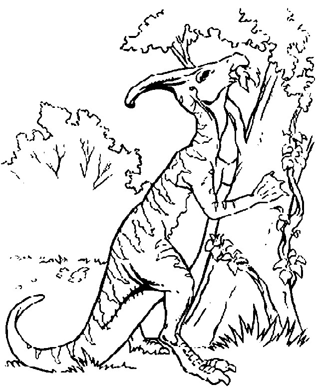 Coloriage Dinosaure Sur L Arbre Dessin Gratuit à Imprimer