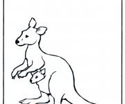 Coloriage Kangourou à colorier
