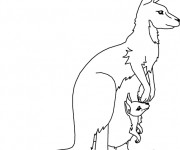 Coloriage et dessins gratuit Kangourou Australie à imprimer
